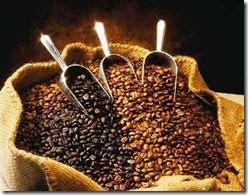 harga-kopi